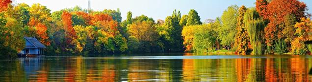 Осенний пейзаж | #36188749