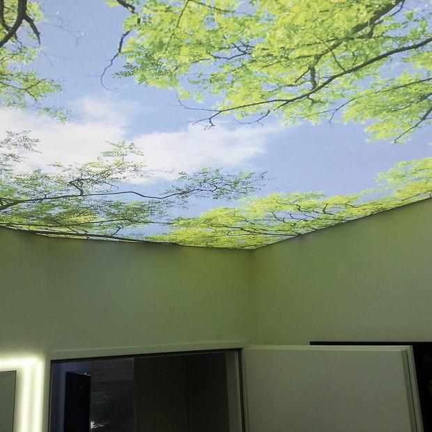 stretch-ceilings-translucent-sky-trees.j