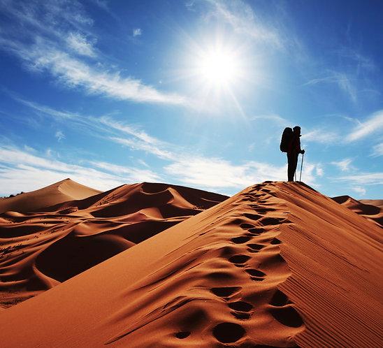 Фотообои. Фрески. Картины. Пустыня. Песчаные дюны. Путешественник. Пейзаж