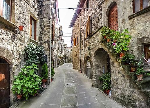 Старые традиционные дома и переулок в городке Виторчиано - Италия