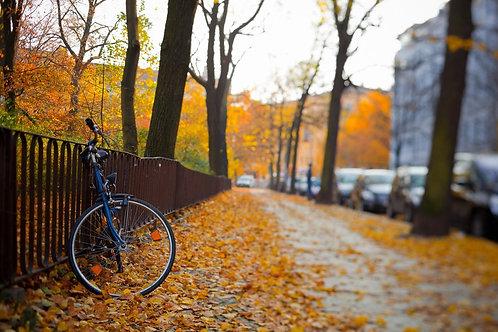 Велосипед в парке в Берлине