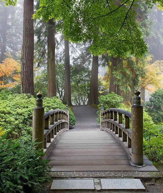 Деревянный пешеходный мост в японском саду осенним утром