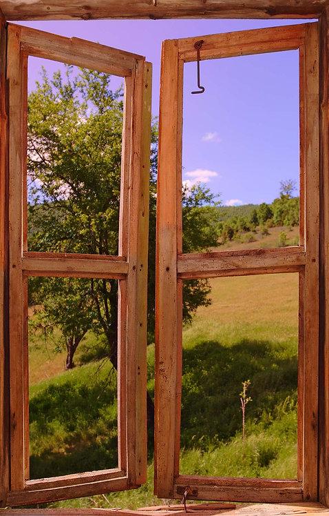 Фотообои. Фрески. Картины. Вид из окна. Деревенский пейзаж