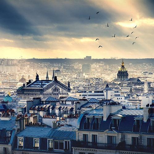 Вид на Париж со стороны Монмартра