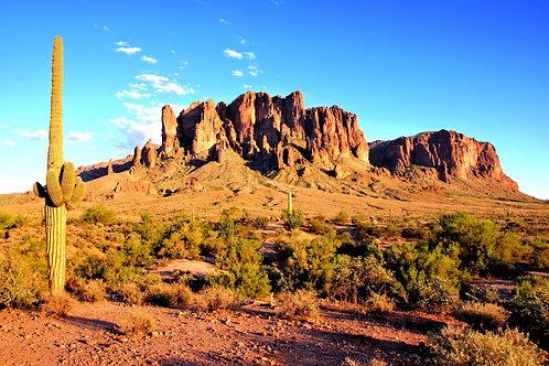 Фотообои. Фрески. Картины. Пустыня. Кактусы. Горы. Аризона. Природа. Пейзаж