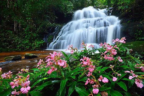 Водопад Mun Dang в тропическом лесу в Таиланде
