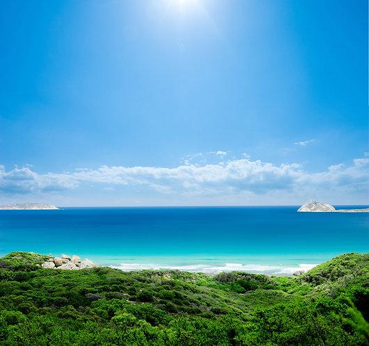 Великолепный пляж и синее небо