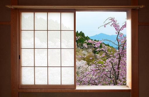 Деревянное японское раздвижное окно с видом на цветущую сакуру