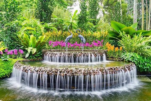 Фотообои. Фрески. Картины. Фонтан. Цветы. Сад орхидей. Сингапур. Природа. Пейзаж