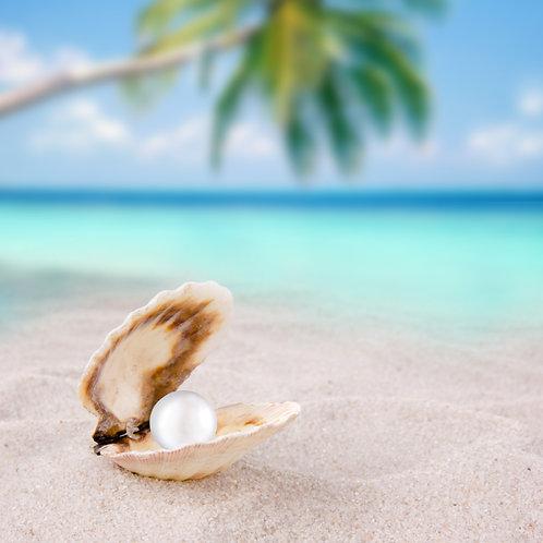 Морская раковина с жемчужиной на пляже