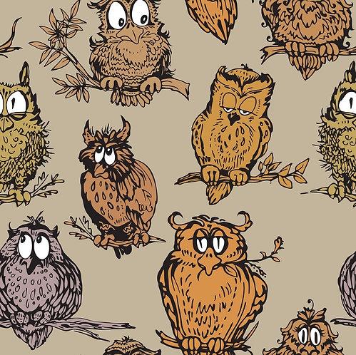 Забавные рисованные совы