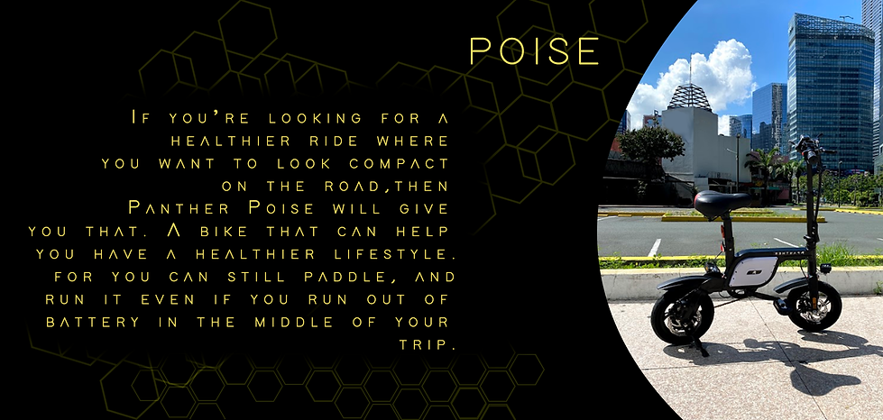 Poise-Description-for-Website.png