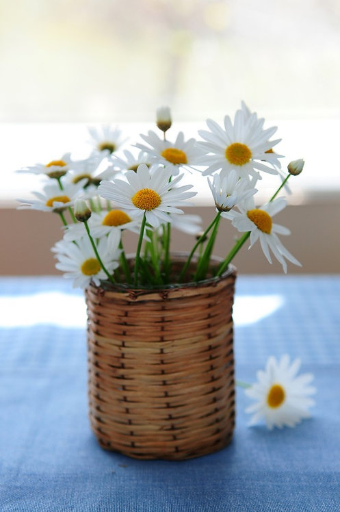 Маленький букет ромашек в плетеной вазе