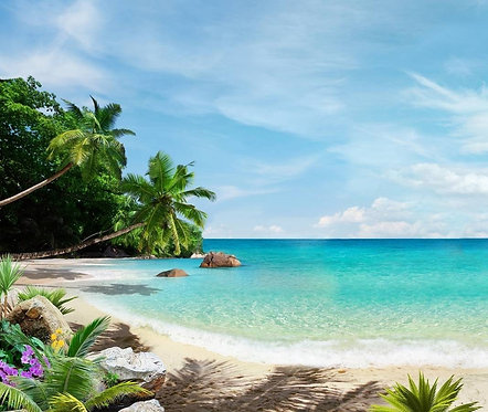 Вид на море и тропический пляж