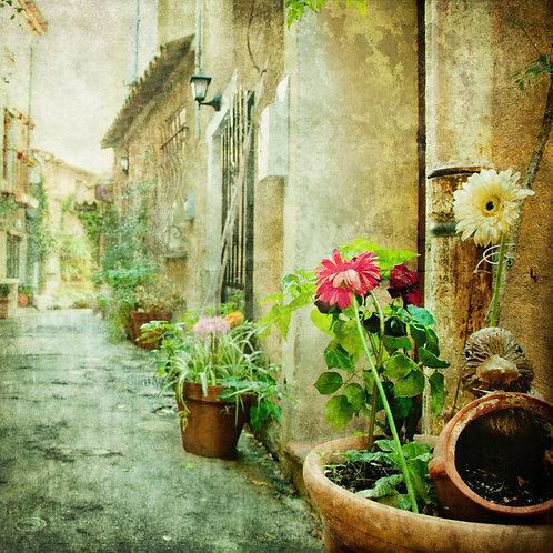 Дворик с цветами в ретро-стиле