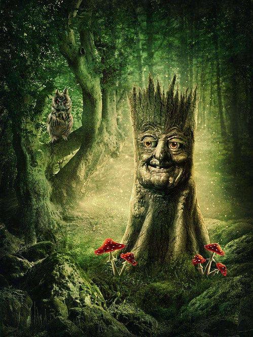 Волшебный пень с лицом в сказочном лесу