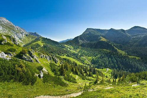 Горная долина и лес в Германии
