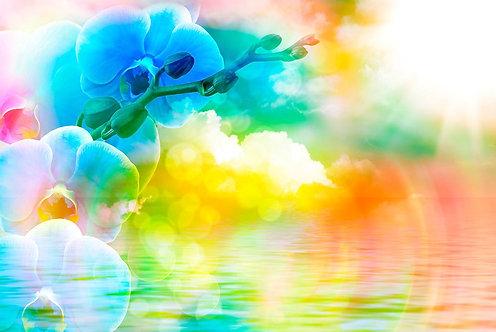 Ветка с цветами орхидеи в красочном фоне
