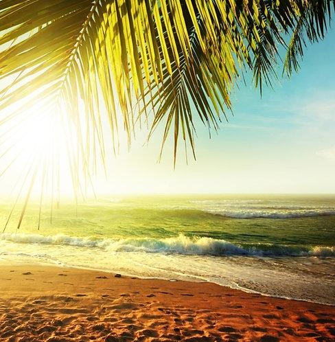 Закат над тропическим пляжем
