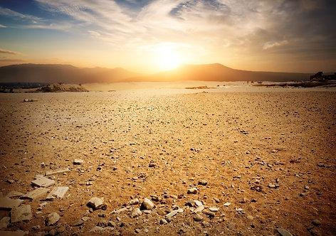 Фотообои. Фрески. Картины. Пустыня. Закат. Египет. Природа. Пейзаж