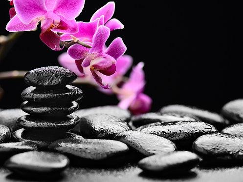 Черные базальтовые камни и ветка фиолетовой орхидеи с росой