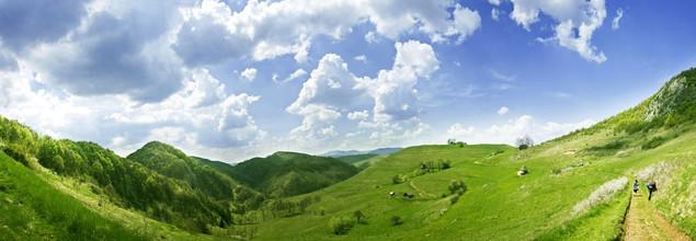 Панорама с летним свежим пейзажем | #53591080
