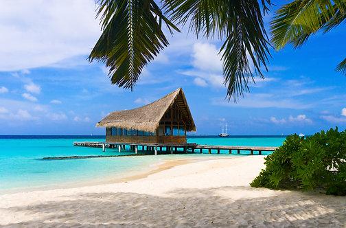 Дайвинг-клуб на фоне тропического острова