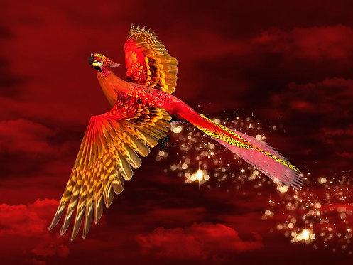 Жар-птица в красном небе
