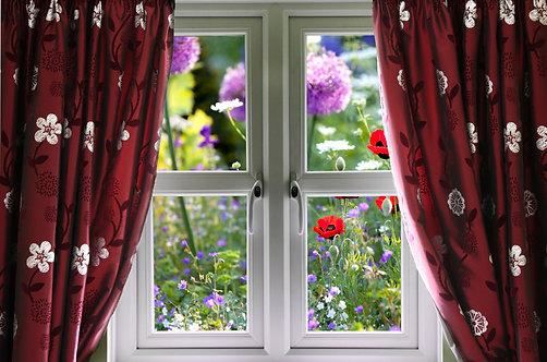 Окно с видом на дикий цветник