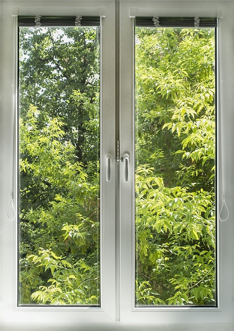 Окно с видом на зеленый сад