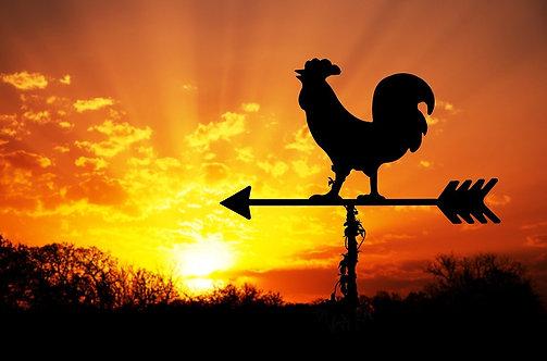 Петух-флюгер на фоне восхода солнца