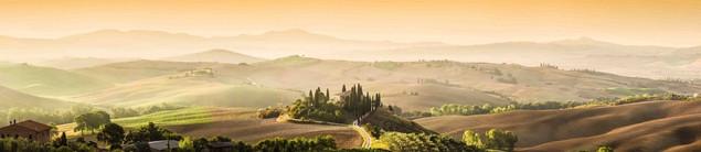 Панорамный пейзаж c холмами и виноградниками - Тоскана, Италия | #370586834