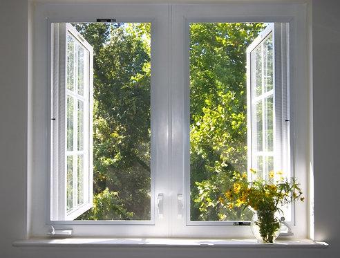 Вид из открытого окна на природу