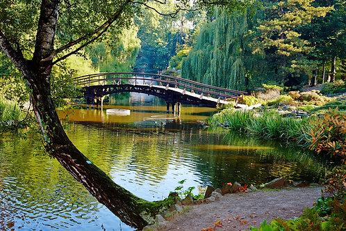 Ботанический сад во Вроцлаве. Польша