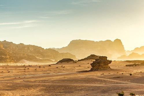 Фотообои. Фрески. Картины. Пустыня. Скалы. Кусты. Иордания. Природа. Пейзаж