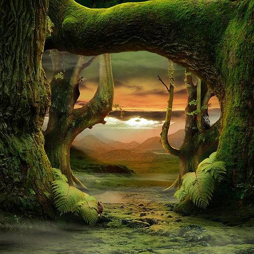 Сказочный лес с видом на закат и горы