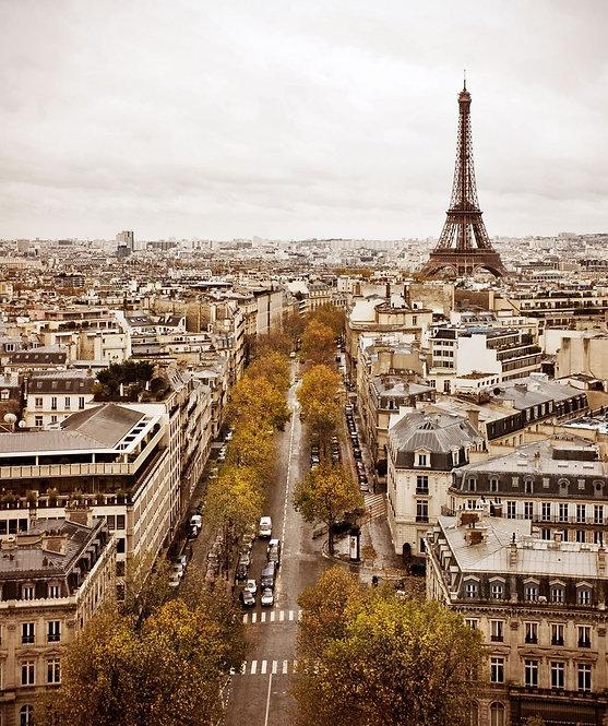 Винтажная панорама Парижа с видом на Эйфелеву башню