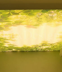 stretch-ceiling-room-translucent-photo-p