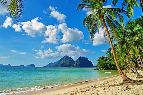 Тропический пейзаж под синим небом с облаками