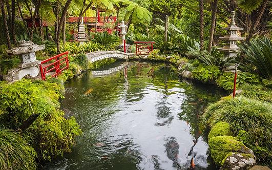 Фотообои. Фрески. Картины. Японский сад. Monte Palace Tropical Garden. Пруд