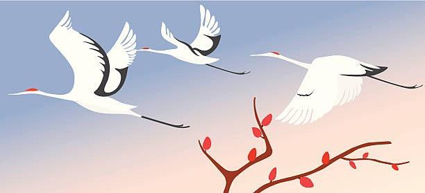 Журавли, летящие в весеннем небе
