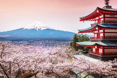 Пагода Chureito с сакурой и прекрасный вид на гору Фудзи
