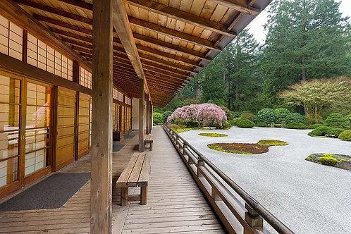 Фотообои. Фрески. Картины. Японский сад. Песчаный ландшафт. Природа и пейзажи