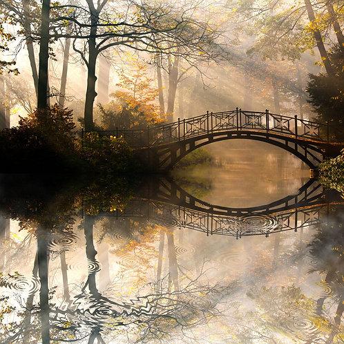 Мост в осеннем туманном парке