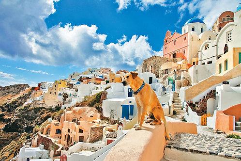 Фотообои. Фрески. Картины. Остров Санторини. Греция