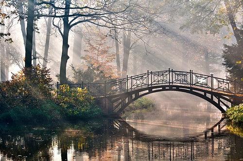 Старый мост в осеннем туманном парке