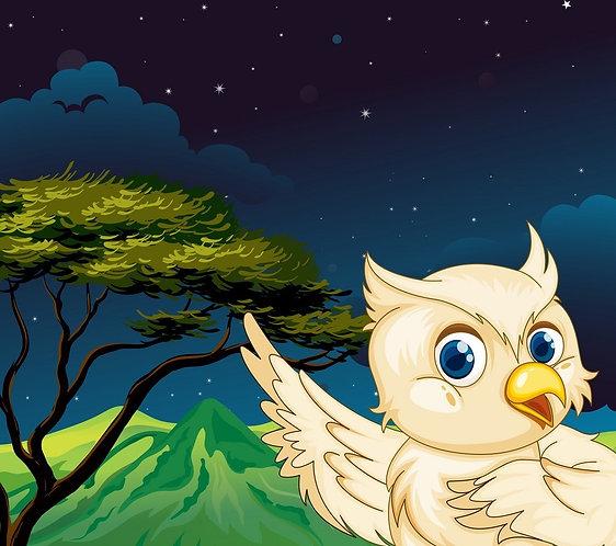 Белая сова в ночном лесу