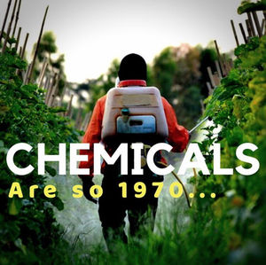 Ditching Commercial Lawn Chemicals: The Kids Deserve Better