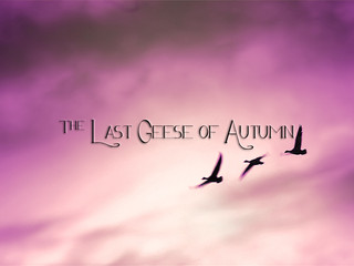 "THE AEGIS: ""The Last Geese of Autumn"""