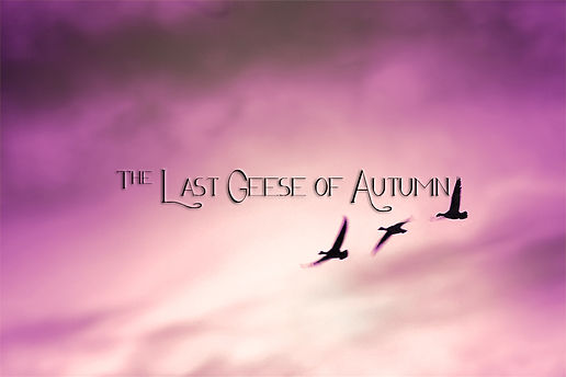 The Last Geese of Autumn
